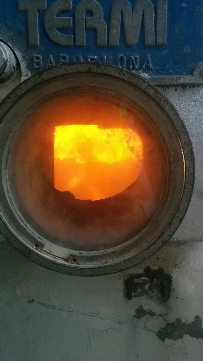 Incineradora: Los problemas